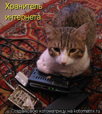 Котоматрица: Хранитель интернета