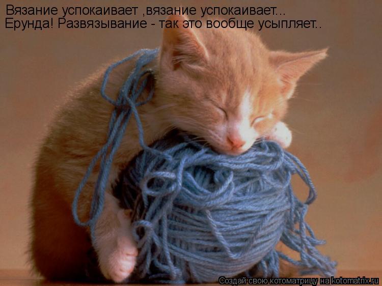 Котоматрица: Вязание успокаивает ,вязание успокаивает... Ерунда! Развязывание - так это вообще усыпляет..