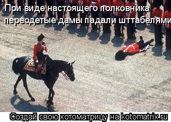 Котоматрица: При виде настоящего полковника переодетые дамы падали шттабелями