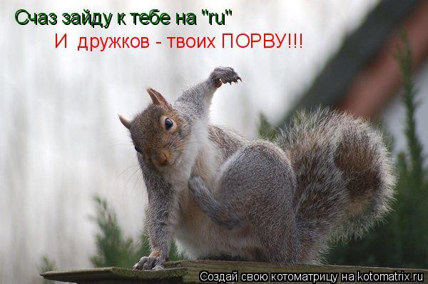 """Котоматрица: Счаз зайду к тебе на """"ru"""" И  дружков - твоих ПОРВУ!!!"""