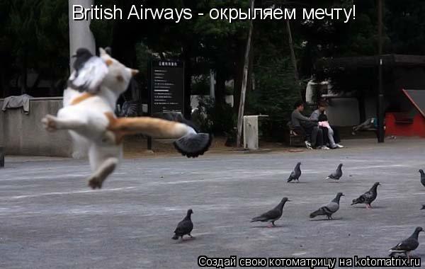 Котоматрица: British Airways - окрыляем мечту!