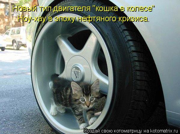 """Котоматрица: Новый тип двигателя """"кошка в колесе"""" Ноу-хау в эпоху нефтяного кризиса."""
