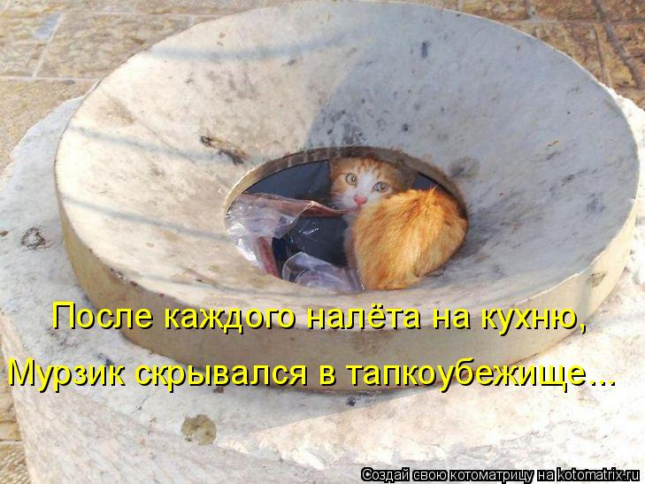 Котоматрица: После каждого налёта на кухню, Мурзик скрывался в тапкоубежище...