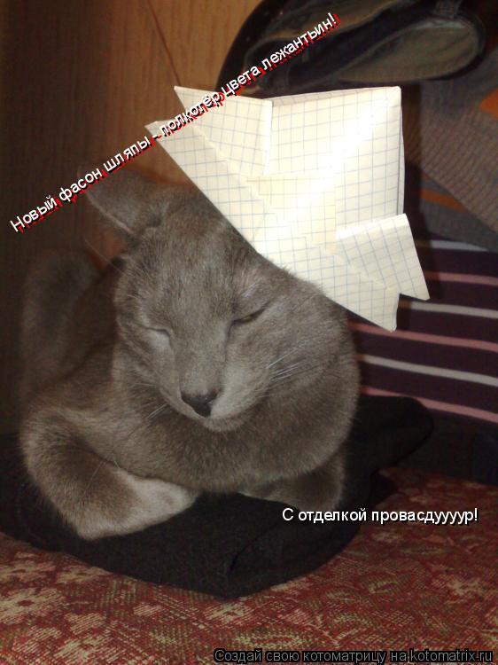 Котоматрица: Новый фасон шляпы - полкотёр цвета лежантьин! Новый фасон шляпы - полкотёр цвета лежантьин! С отделкой провасдуууур!