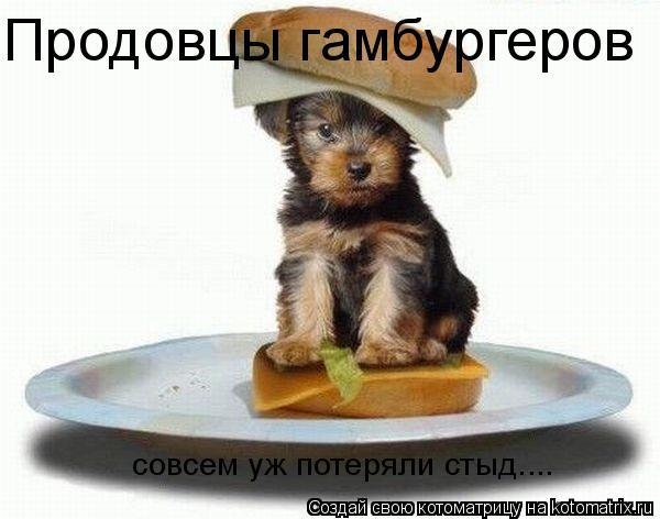 Котоматрица: Продовцы гамбургеров совсем уж потеряли стыд....