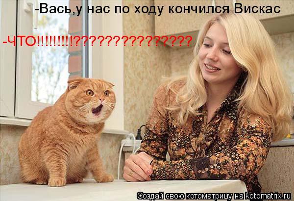Котоматрица: -Вась,у нас по ходу кончился Вискас -ЧТО!!!!!!!!!???????????????