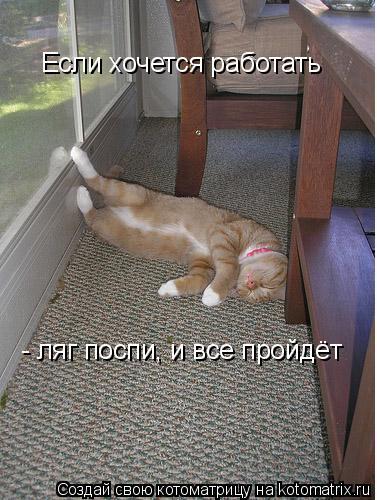 Котоматрица: Если хочется работать - ляг поспи, и все пройдёт