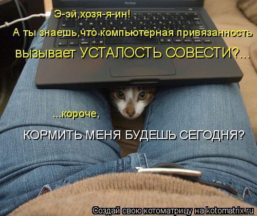 Котоматрица: вызывает УСТАЛОСТЬ СОВЕСТИ?... ...короче, КОРМИТЬ МЕНЯ БУДЕШЬ СЕГОДНЯ? Э-эй,хозя-я-ин! А ты знаешь,что компьютерная привязанность