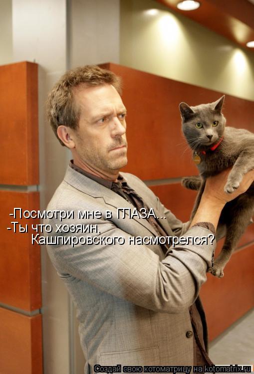 Котоматрица: -Посмотри мне в ГЛАЗА... -Ты что хозяин, Кашпировского насмотрелся?