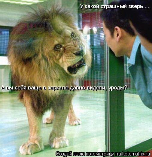 Котоматрица: У какой страшный зверь..... А вы себя ваще в зеркале давно видели, уроды?