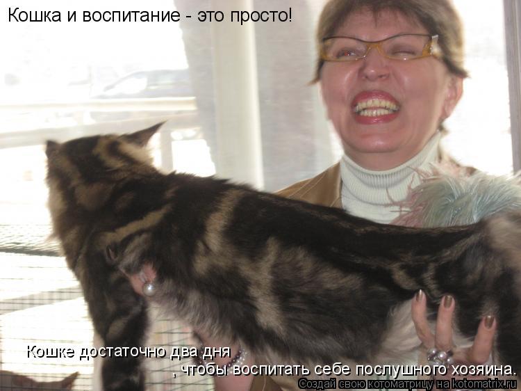 Котоматрица: Кошка и воспитание - это просто! Кошке достаточно два дня , чтобы воспитать себе послушного хозяина.