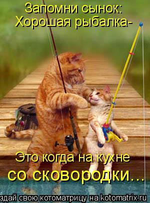 Котоматрица: Запомни сынок: Хорошая рыбалка- Это когда на кухне со сковородки...