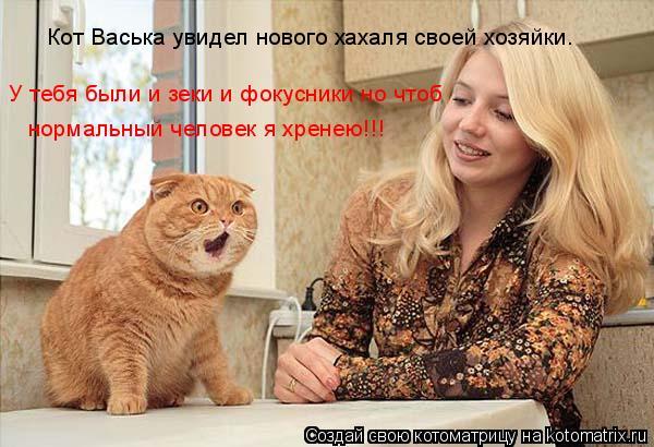 Котоматрица: Кот Васька увидел нового хахаля своей хозяйки. У тебя были и зеки и фокусники но чтоб  нормальный человек я хренею!!!