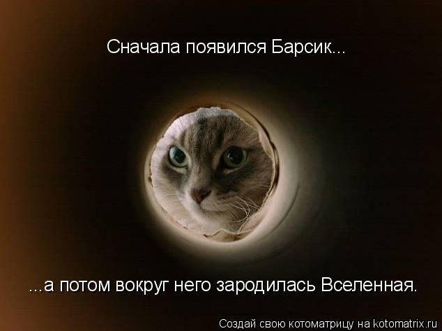 Котоматрица: Сначала появился Барсик... ...а потом вокруг него зародилась Вселенная.
