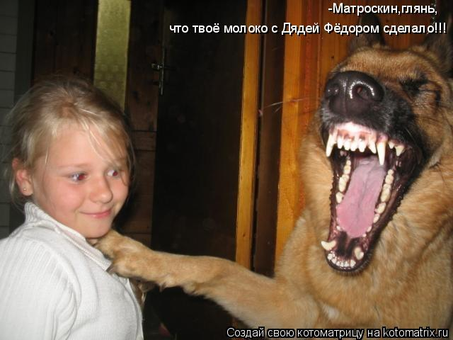 Котоматрица: -Матроскин,глянь, что твоё молоко с Дядей Фёдором сделало!!!