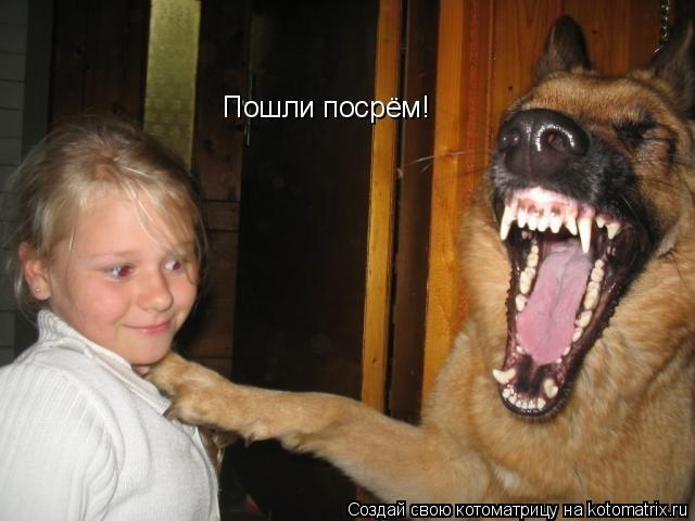 Котоматрица: Пошли посрём!