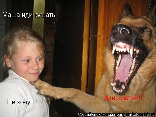 Котоматрица: Маша иди кушать Не хочу!!!! Иди жрать!!!!