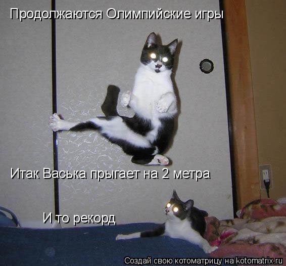 Котоматрица: Продолжаются Олимпийские игры Итак Васька прыгает на 2 метра И то рекорд