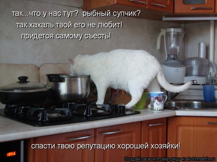 http://kotomatrix.ru/images/lolz/2009/09/06/353512.jpg