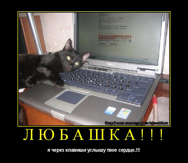 Котоматрица:  любашка!!! я через клавиши услышу твое сердце.!!!
