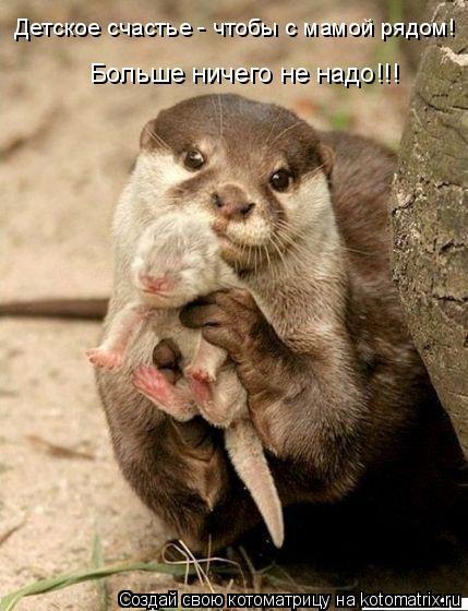 Котоматрица: Детское счастье - чтобы с мамой рядом! Больше ничего не надо!!!