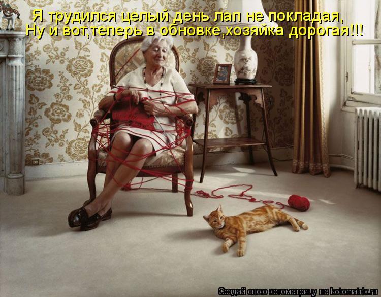 Котоматрица: Я трудился целый день лап не покладая, Ну и вот,теперь в обновке,хозяйка дорогая!!!