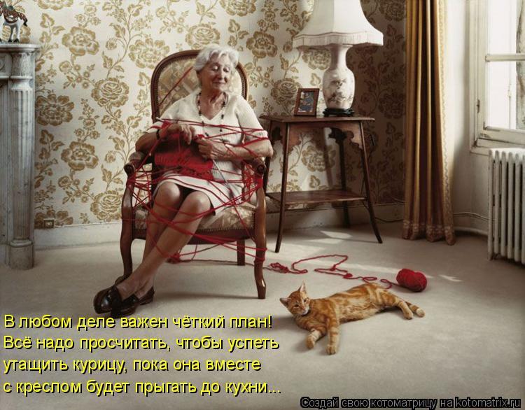 Котоматрица: В любом деле важен чёткий план!  Всё надо просчитать, чтобы успеть  утащить курицу, пока она вместе  с креслом будет прыгать до кухни...