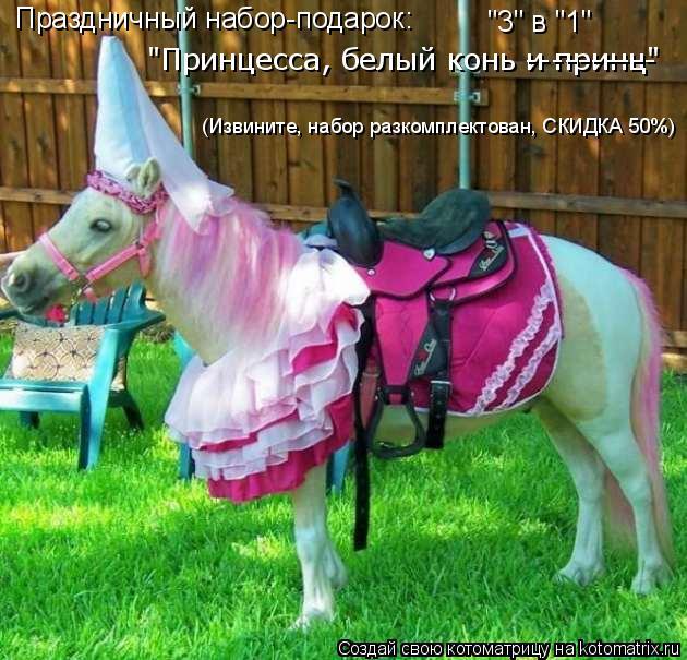 """Котоматрица: Праздничный набор-подарок: """"3"""" в """"1"""" """"Принцесса, белый конь и принц"""" ---------- (Извините, набор разкомплектован, СКИДКА 50%)"""