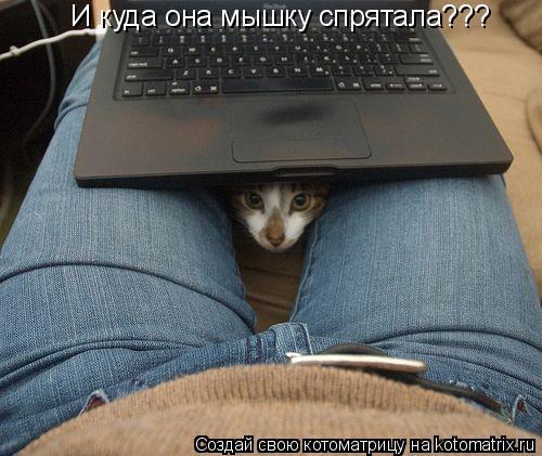 Котоматрица: И куда она мышку спрятала???
