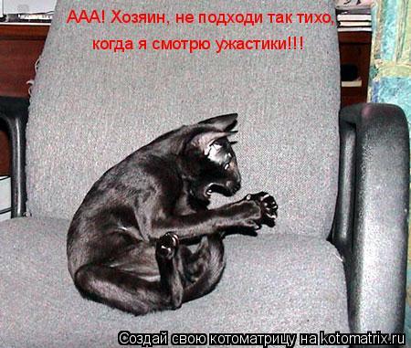 Котоматрица: ААА! Хозяин, не подходи так тихо,  когда я смотрю ужастики!!!