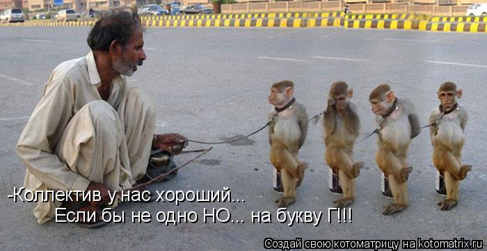 Котоматрица: -Коллектив у нас хороший... Если бы не одно НО... на букву Г!!!