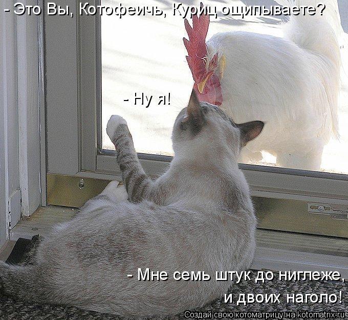 Котоматрица: - Это Вы, Котофеичь, Куриц ощипываете? - Ну я! - Мне семь штук до ниглеже,  и двоих наголо!