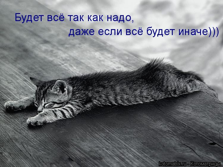 Котоматрица: Будет всё так как надо, даже если всё будет иначе))) даже если всё будет иначе))) даже если всё будет иначе)))
