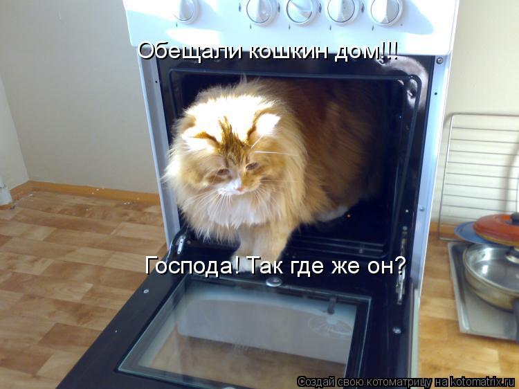 Котоматрица: Обещали кошкин дом!!! Господа! Так где же он?