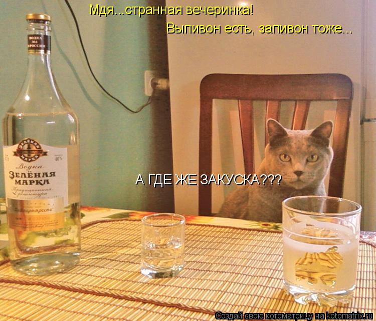 Котоматрица: Мдя...странная вечеринка! Выпивон есть, запивон тоже... А ГДЕ ЖЕ ЗАКУСКА???