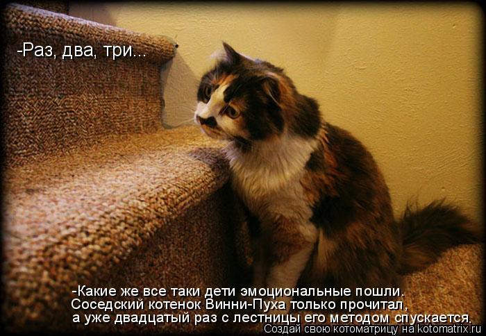 Котоматрица: -Раз, два, три... а уже двадцатый раз с лестницы его методом спускается Соседский котенок Винни-Пуха только прочитал, -Какие же все таки дети э