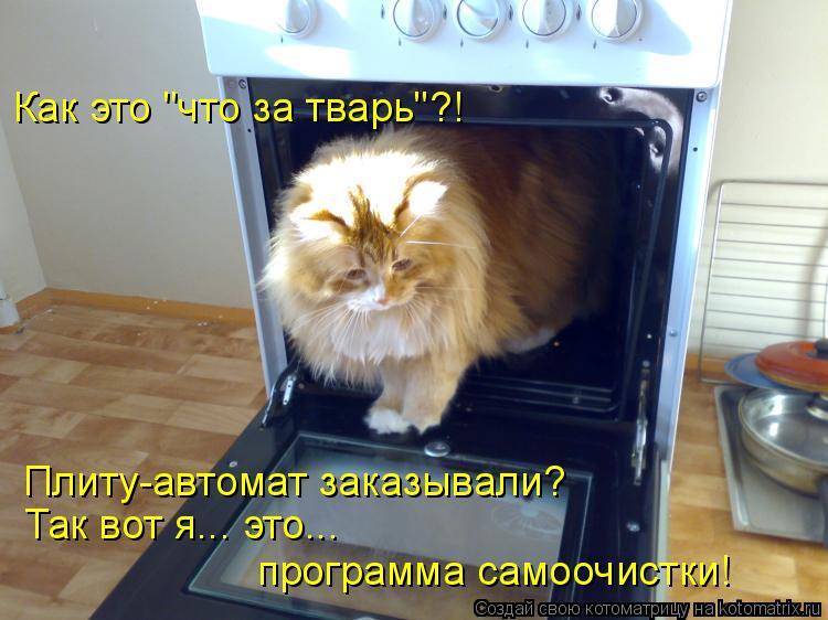 """Котоматрица: Как это """"что за тварь""""?! Плиту-автомат заказывали? Так вот я... это... программа самоочистки!"""
