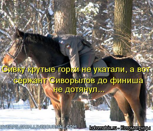 Котоматрица: Сивку крутые горки не укатали, а вот  сержант Сиворылов до финиша  не дотянул...