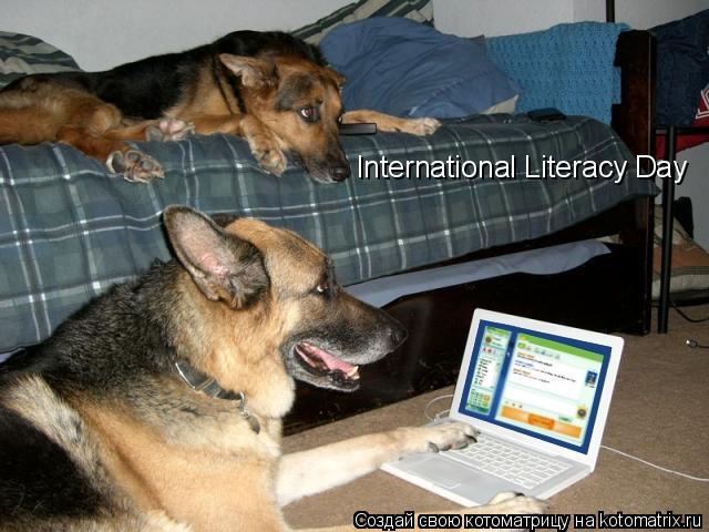 Котоматрица: International Literacy Day