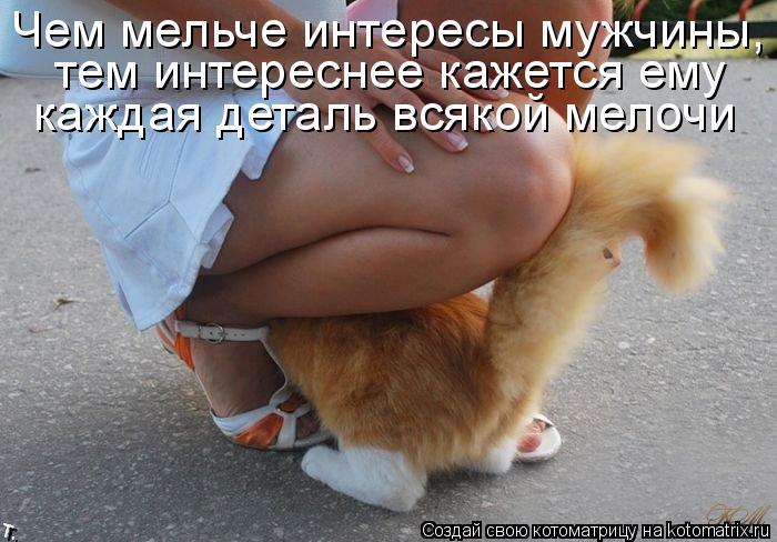Котоматрица: Чем мельче интересы мужчины, тем крупнее кажется ему каждая мелочь. тем интереснее кажется ему  каждая деталь всякой мелочи