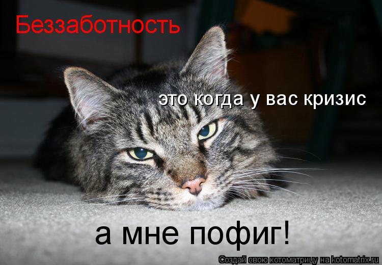 Котоматрица: Беззаботность это когда у вас кризис а мне пофиг!