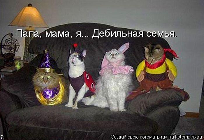 Котоматрица: Папа, мама, я... Дебильная семья.