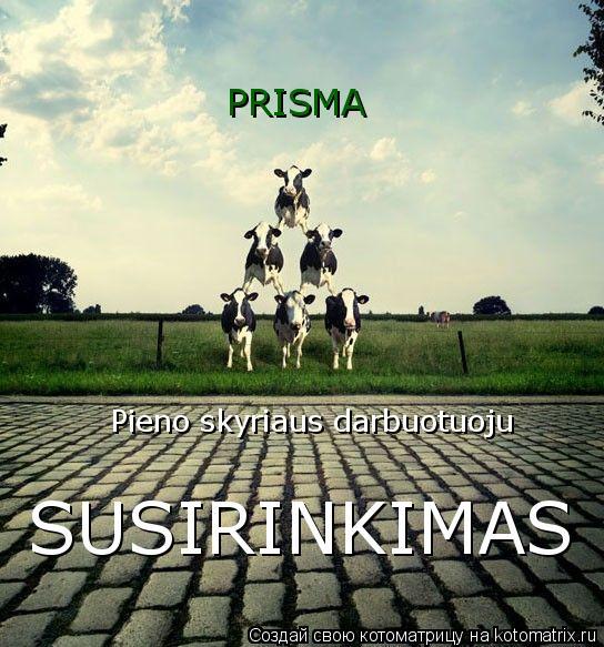 Котоматрица: PRISMA  Pieno skyriaus darbuotuoju  SUSIRINKIMAS
