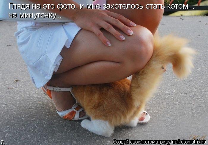 Котоматрица: Глядя на это фото, и мне захотелось стать котом... на минуточку...