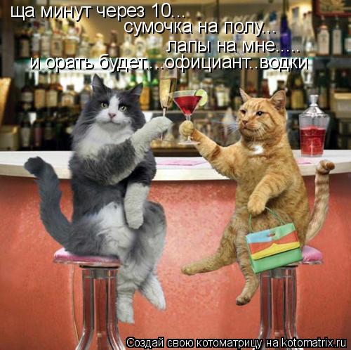 Котоматрица: ща минут через 10... сумочка на полу... лапы на мне..... и орать будет....официант..водки