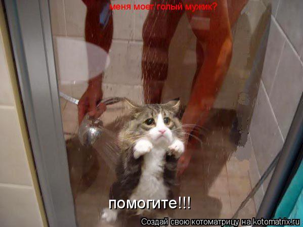 Котоматрица: меня моет голый мужик? помогите!!!