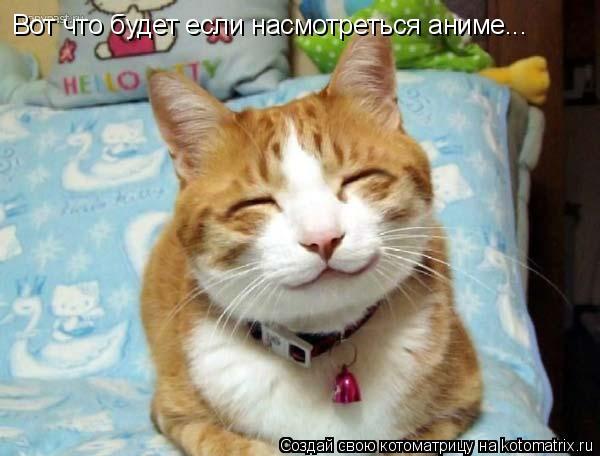 Котоматрица: Вот что будет если насмотреться аниме... Вот что будет если насмотреться аниме...