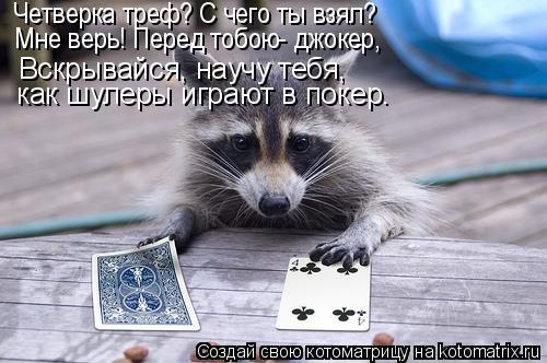 Котоматрица: Вскрывайся, научу тебя,  как шулеры играют в покер. Четверка треф? С чего ты взял? Мне верь! Перед тобою- джокер,