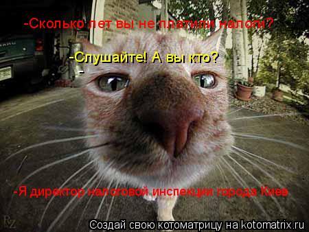Котоматрица: -  -Сколько лет вы не платили налоги? -Слушайте! А вы кто? -Я директор налоговой инспекции города Киев