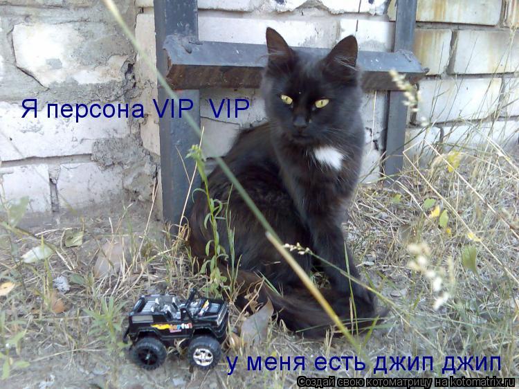 Котоматрица: Я персона VIP  VIP у меня есть джип джип